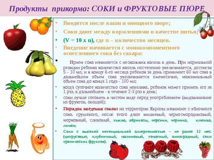 Нужны ли персики в рационе малышей? с какого возраста можно давать ребенку персики - onwomen.ru