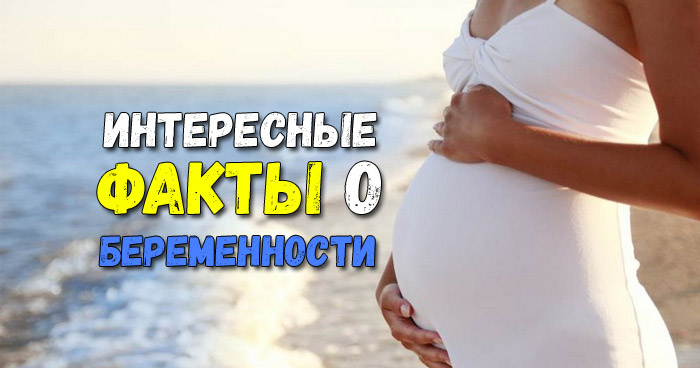 Интересные факты о беременности, родах, тестах на беременность
