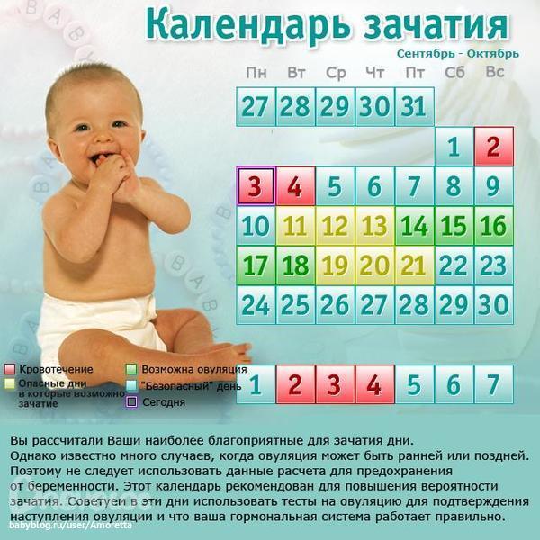 Календарь овуляции - календарь овуляции и зачатия рассчитать онлайн бесплатно