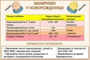 Норма билирубина у новорожденных: причины повышения, расшифровка анализа, 3 совета родителям после выписки