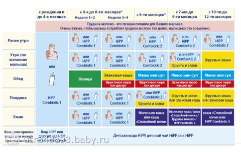 Меню ребенка в 6 месяцев: основа рациона и принципы питания