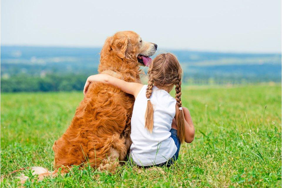 Взаимоотношения детей и домашних животных: что нужно знать