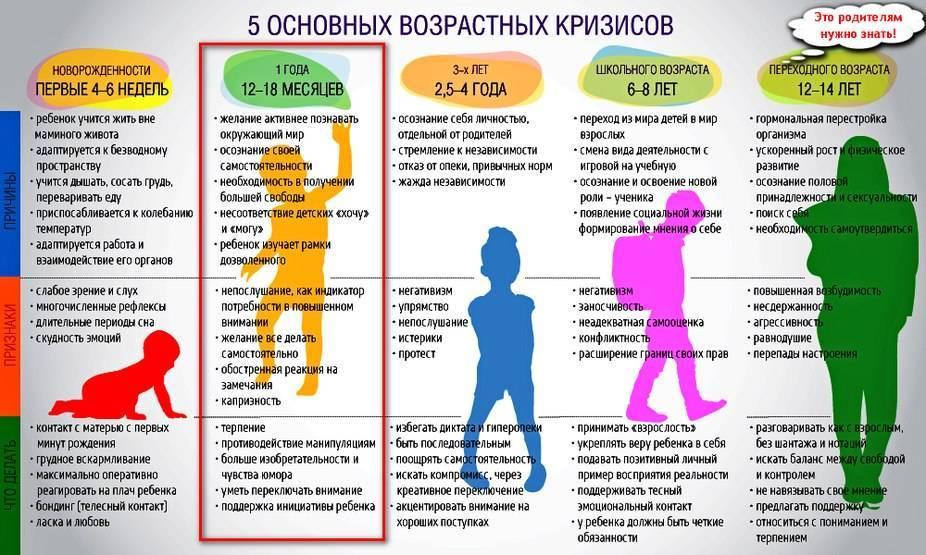 Кризис 1 года у ребёнка: возрастная психология + совет комаровского
