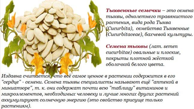Польза и вред тыквенных семечек на ранних и поздних сроках беременности