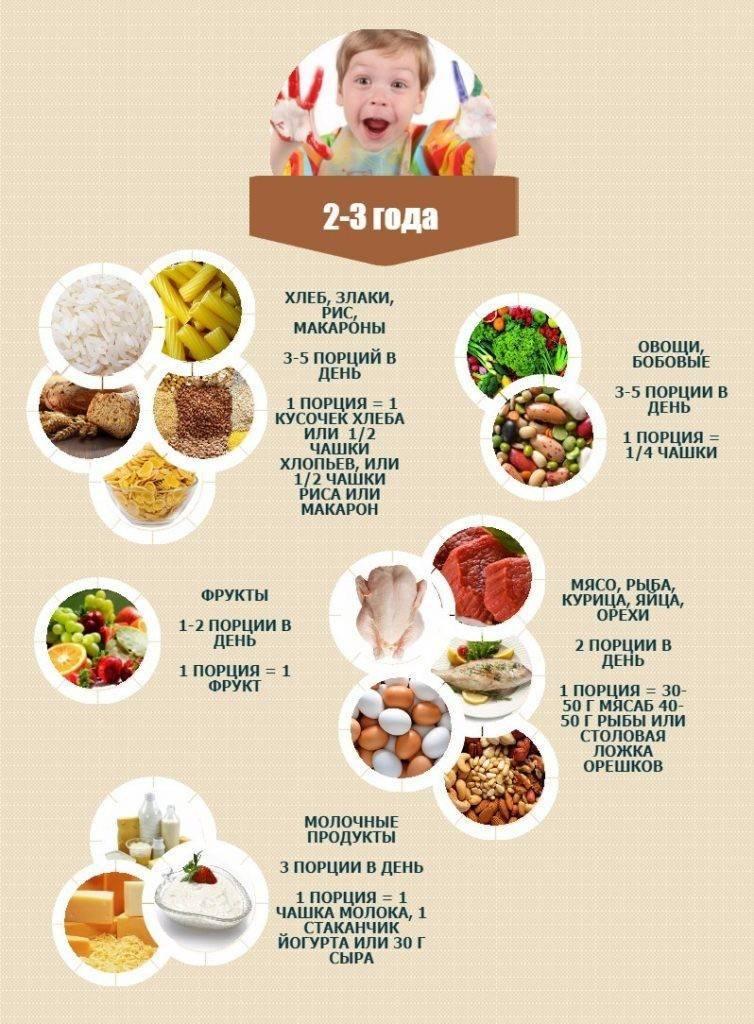 Меню детского сада для детей: рацион на неделю с рецептами, летнее и зимнее меню, особенности питания в ясельной группе