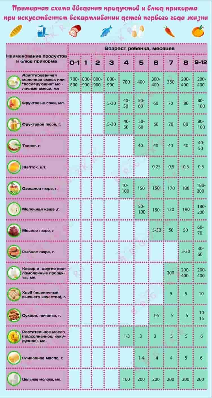 Питание ребёнка догода: как икогда вводить прикорм