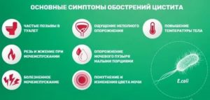 Симптомы илечение цистита после родов
