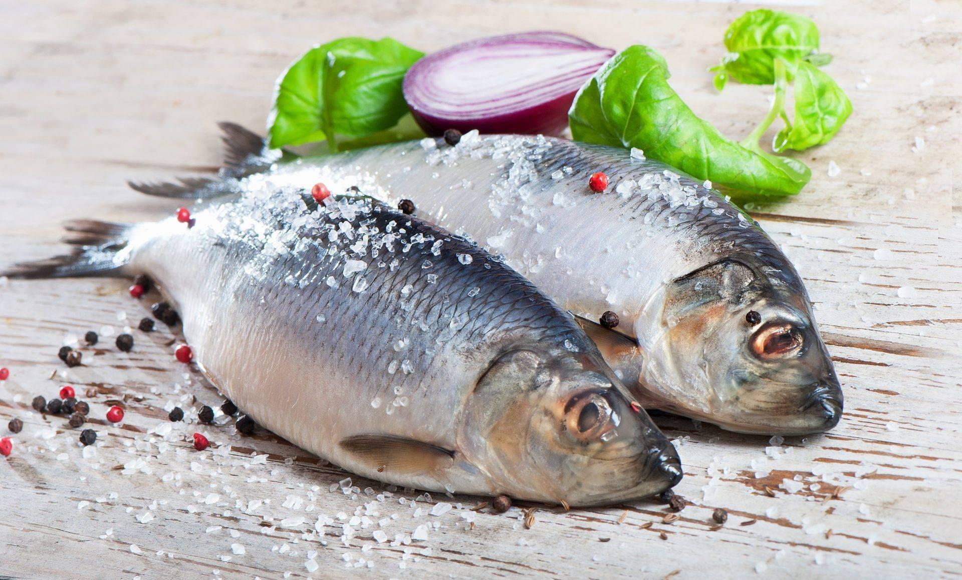 Какую рыбу можно кормящим мамам, допустимо ли кушать красную и соленую при грудном вскармливании
