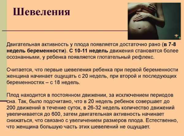 2 неделя беременности от даты зачатия: симптомы и признаки, развитие эмбриона