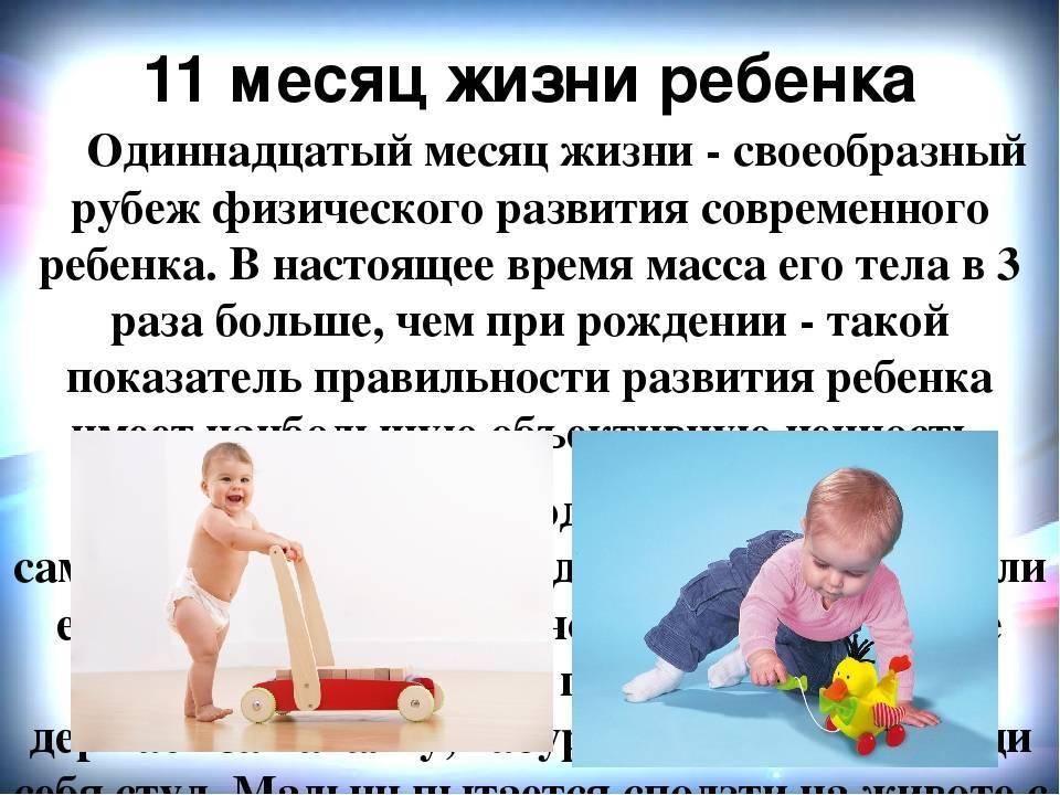 Развитие ребенка в 10 месяцев: навыки, умения, режим дня
