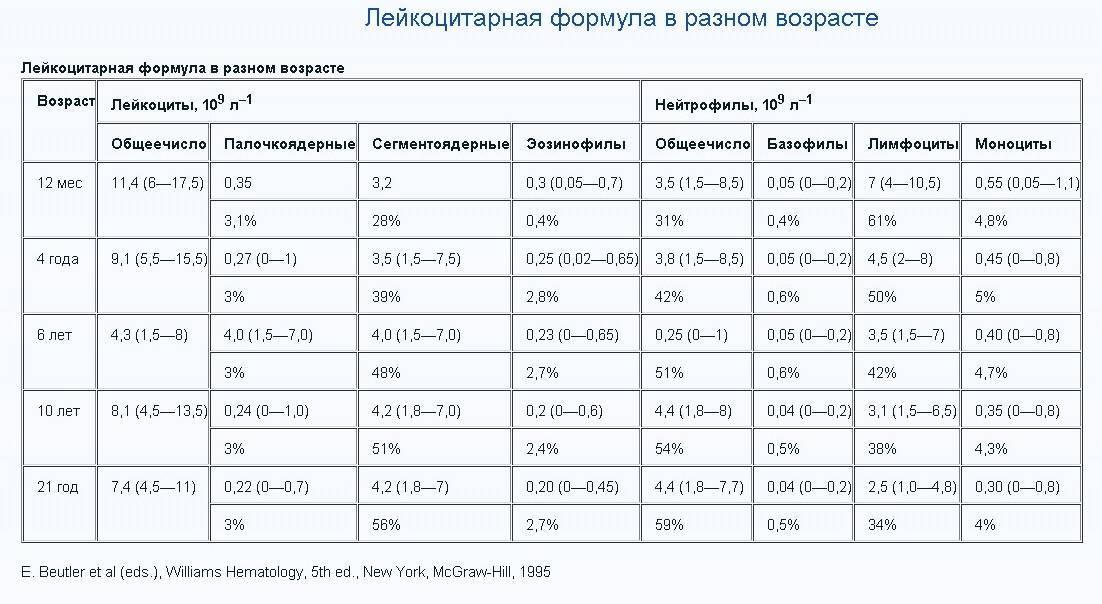 Таблица с нормами уровня лейкоцитов в крови у новорожденных и детей старшего возраста - врач 24/7