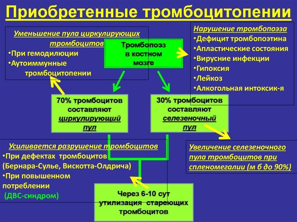 Тромбоцитопеническая пурпура у детей - лечение и симптомы