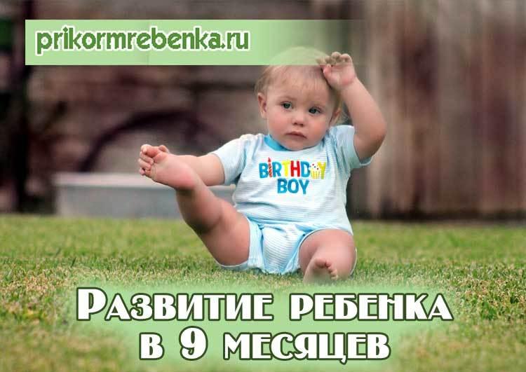 Ребенок 9 месяцев: развитие, что должен уметь