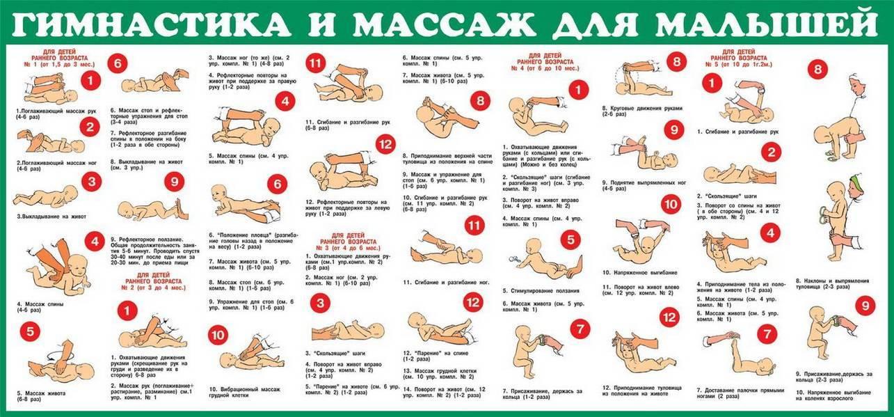 Ежедневный массаж и гимнастика для детей от 9 месяцев до года: общеукрепляющие упражнения с видео-уроком