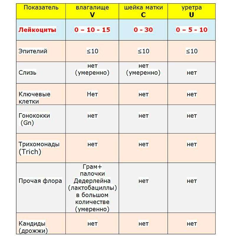 Мазок на флору при беременности: норма и отклонения от нее / mama66.ru