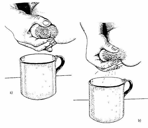 Кормление сцеженным молоком из бутылочки: плюсы и минусы, нормы и правила