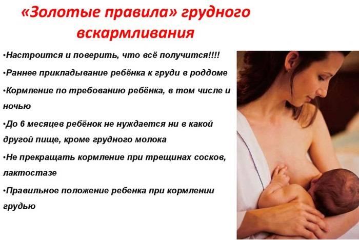 Правильное грудное вскармливание: 6 основополагающих принципов