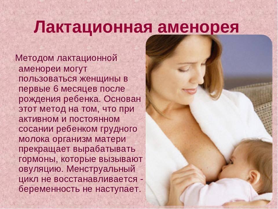 Беременность при грудном вскармливании: вероятность и совмещение / mama66.ru