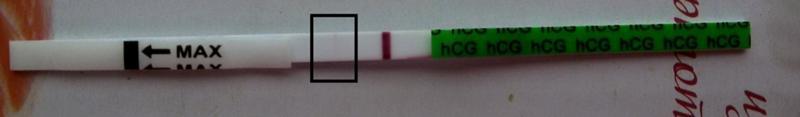 Как выглядят полоски на тесте на беременность и как интерпретировать результаты?