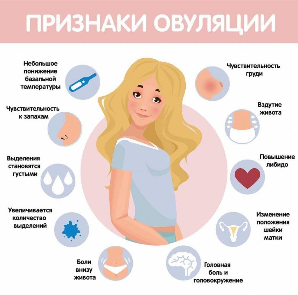 Первые признаки на ранних сроках беременности до задержки: месячные