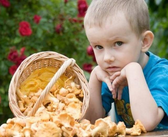 Можно ли детям грибной суп: как начать знакомство с грибовницей