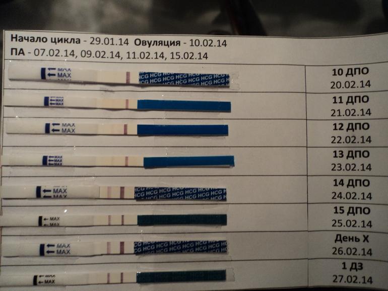Когда делать тест на беременность, через сколько и как правильно? | беременность онлайн