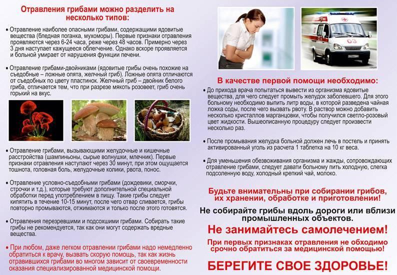 Лечение отравления грибами в домашних условиях отравление.ру лечение отравления грибами в домашних условиях