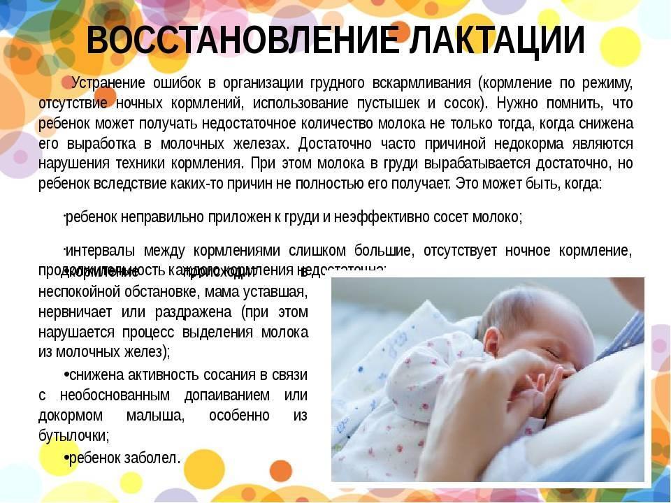 Как вернуть молоко кормящей маме. как восстановить лактацию грудного молока