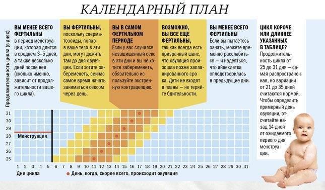 Беременность после и в 40 лет
