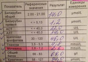 Беременность до задержки: симптомы и достоверные способы определения / mama66.ru
