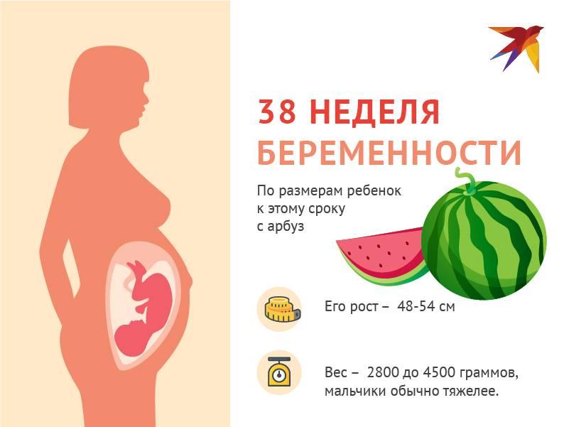 9 месяц беременности: предвестники, признаки и начало родов