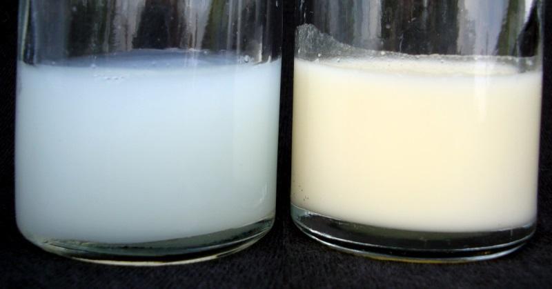 Рацион кормящей мамы: что есть, чтобы грудное молоко было вкусным и полезным для малыша?