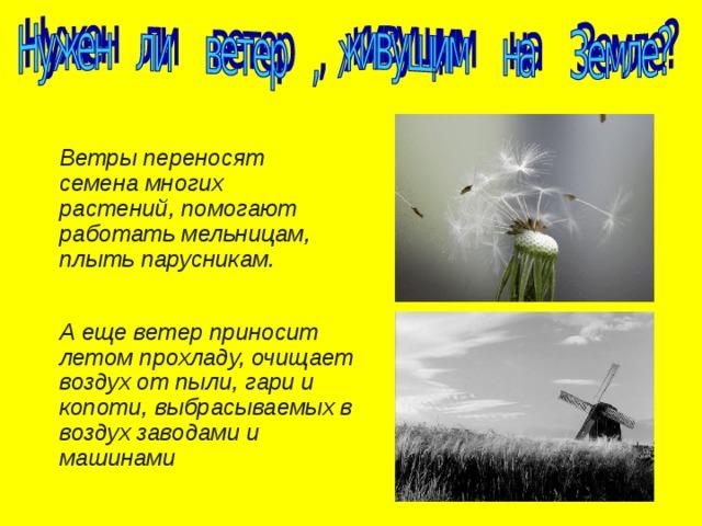 Детские стихи про ветер - подборка стихов про ветер для детей