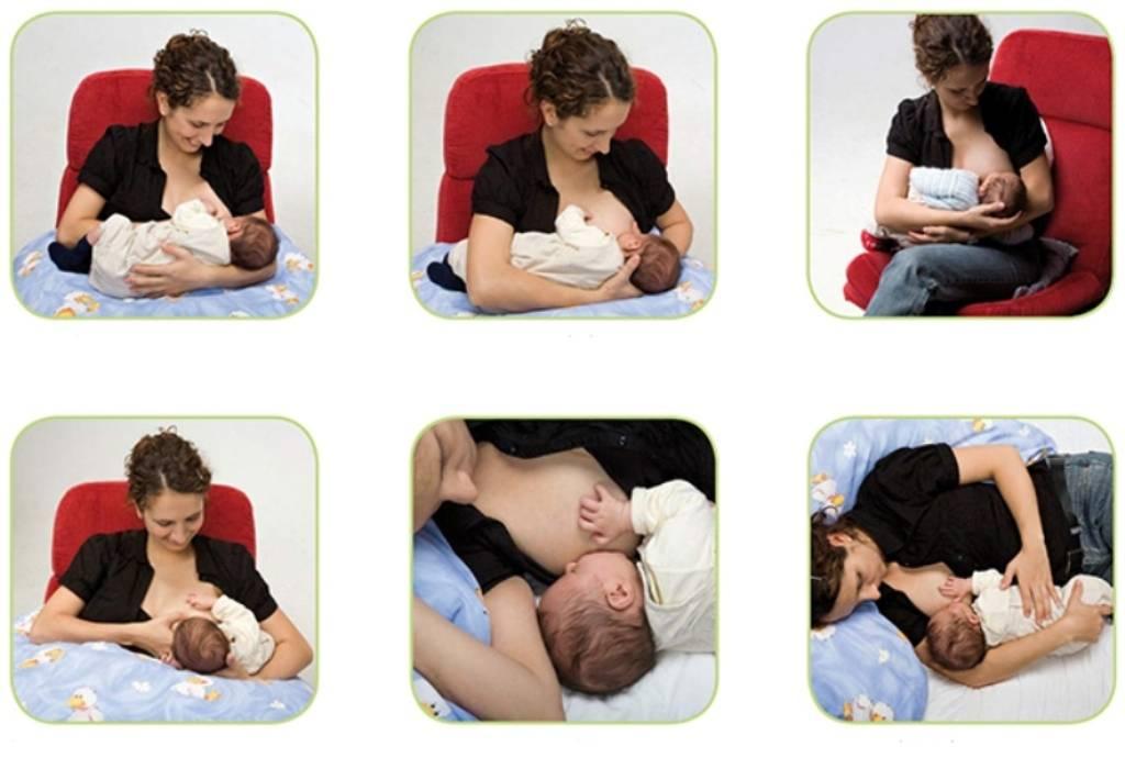 Позы для кормления новорожденных грудью: как кормить ребенка грудным молоком | lisa.ru