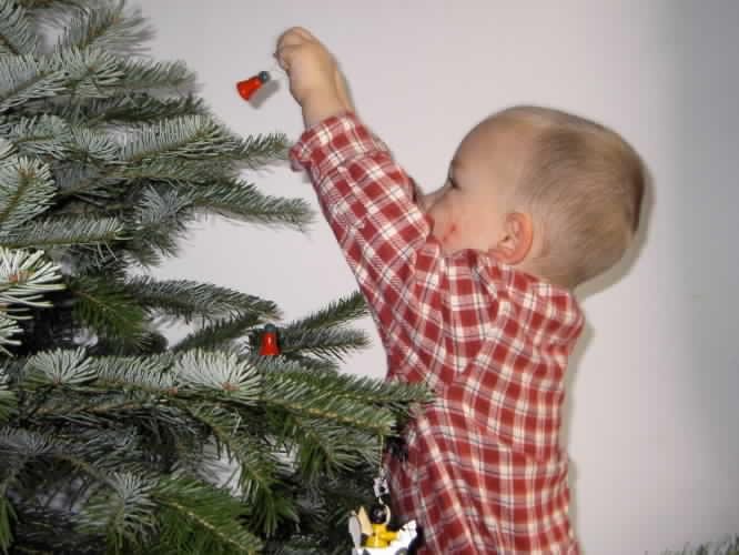Елка и маленький ребенок: меры безопасности