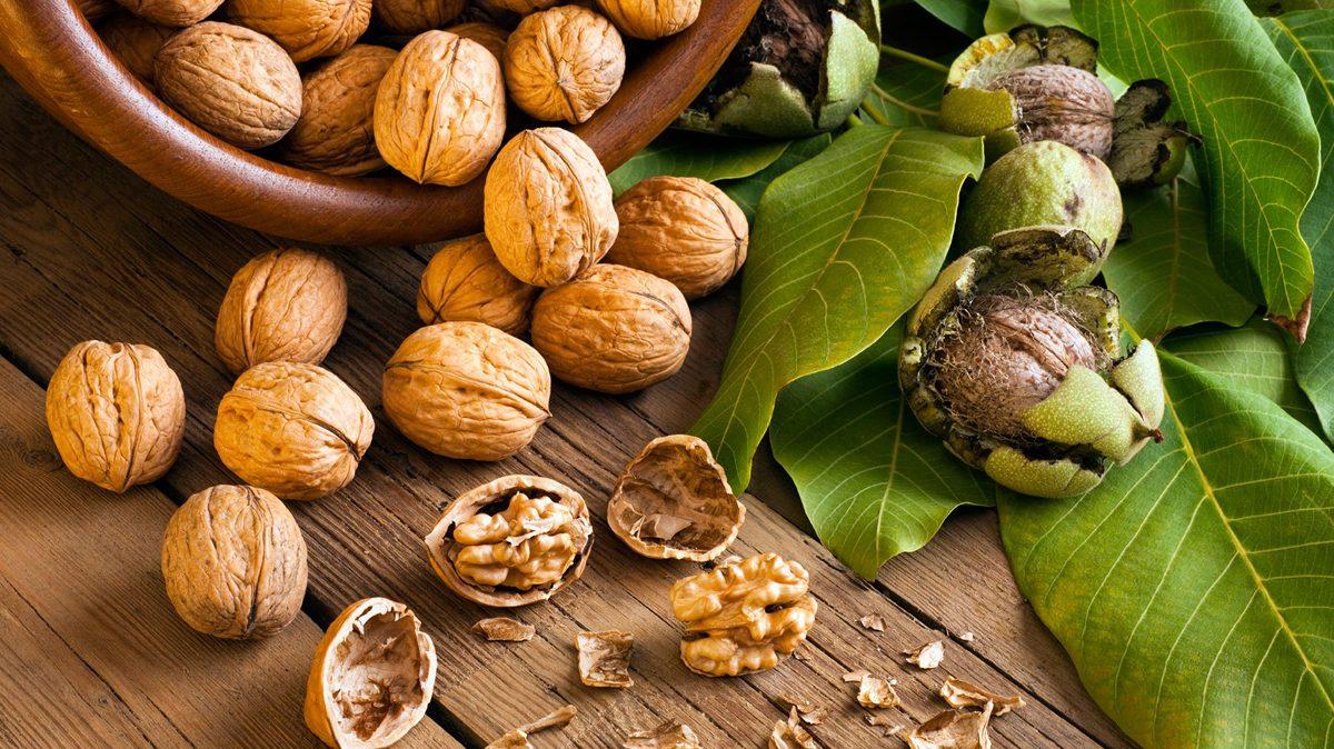 Орехи при беременности: бразильский орех, кешью, мускатный орех, миндаль / mama66.ru