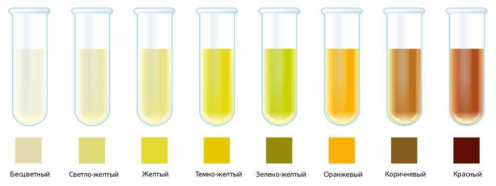 Темная моча у ребенка: причины, почему темнеет, желто-оранжевая, зеленая, голубая