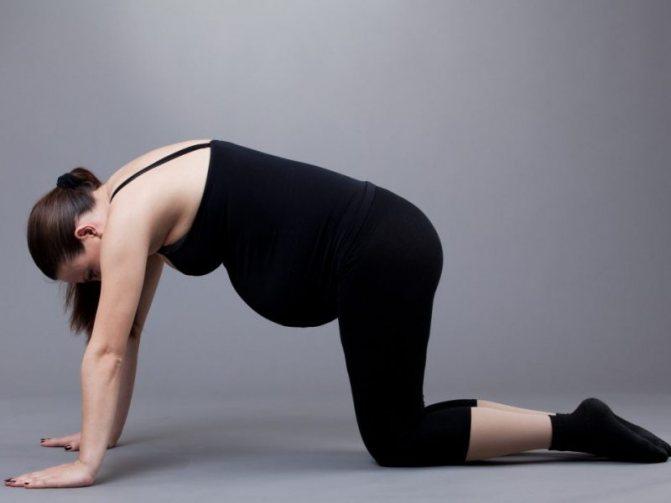 Польза коленно-локтевого, или дренажного, положения при беременности: зачем беременным стоять на четвереньках?