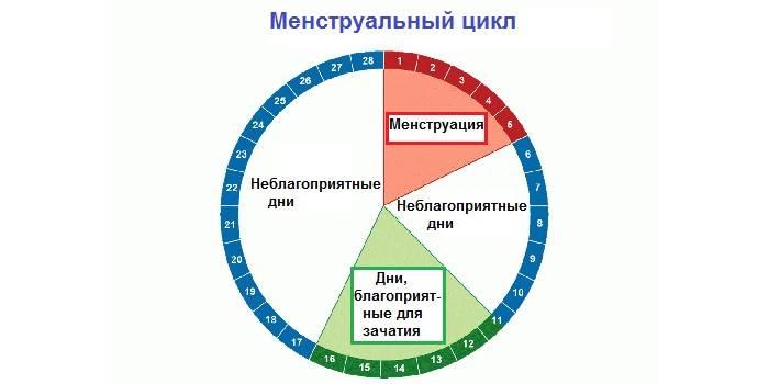 Как увеличить шансы при эко / mama66.ru