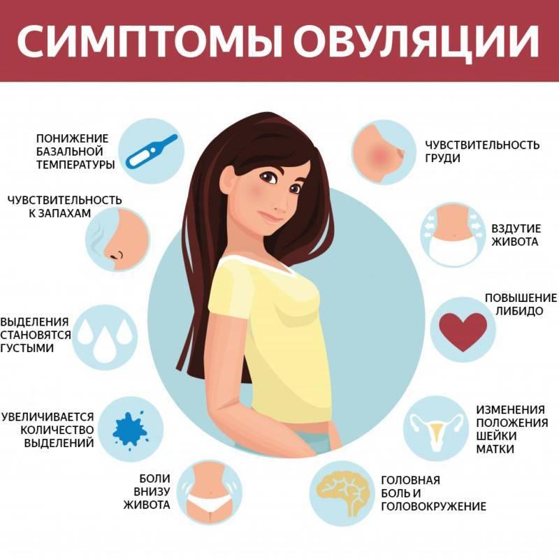 Болит и набухает грудь после месячных, тянет низ живота: почему так бывает, опасно ли это и что делать.
