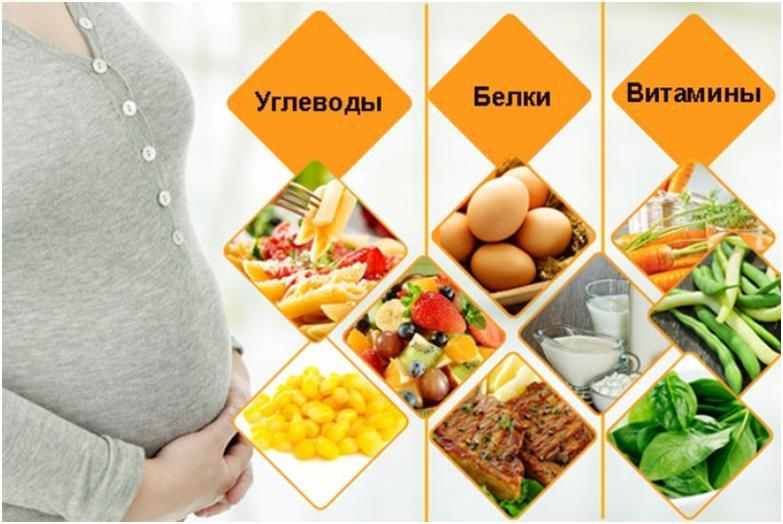 Питание во время беременности   - образ жизни во время беременности