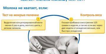 Как понять наелся ли новорожденный грудным молоком - всё о грудничках