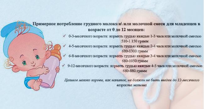 До какого возраста кормить ребенка грудным молоком: сколько по времени занимает кормление, через сколько часов нужно прикладывать к груди