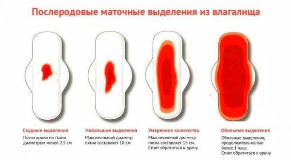 Сколько дней после родов идут кровянистые выделения?
