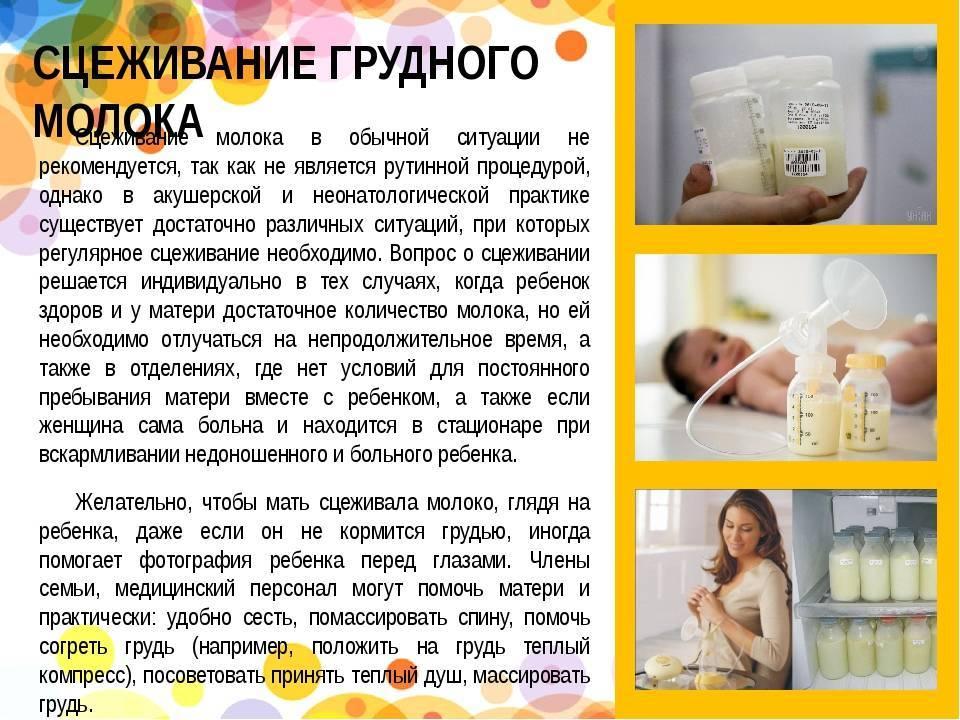 Нужно ли сцеживать молоко после каждого кормления ребенка - топотушки
