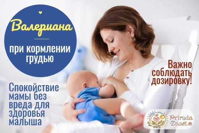 Валерьянка при грудном вскармливании:можно ли принимать кормящим мамам?
