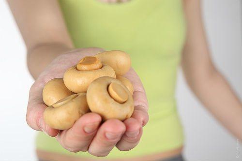 Грибы опята — можно ли употреблять блюда из них при грудном вскармливании?