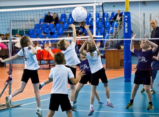 Лучшие виды спорта для детей разных возрастов, какой выбрать