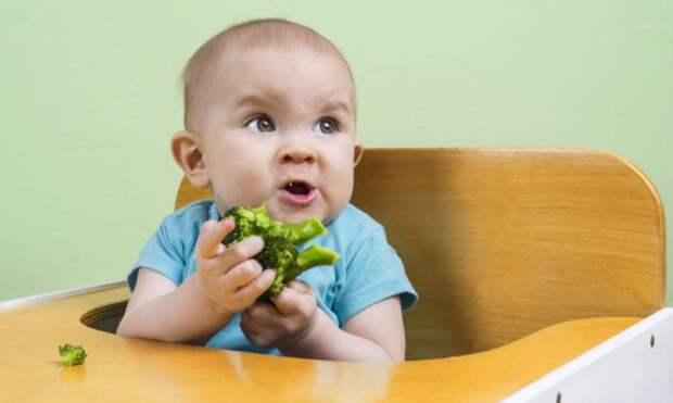 Как уговорить ребенка есть овощи: 7 советов - «я и дети» » « дети и я »