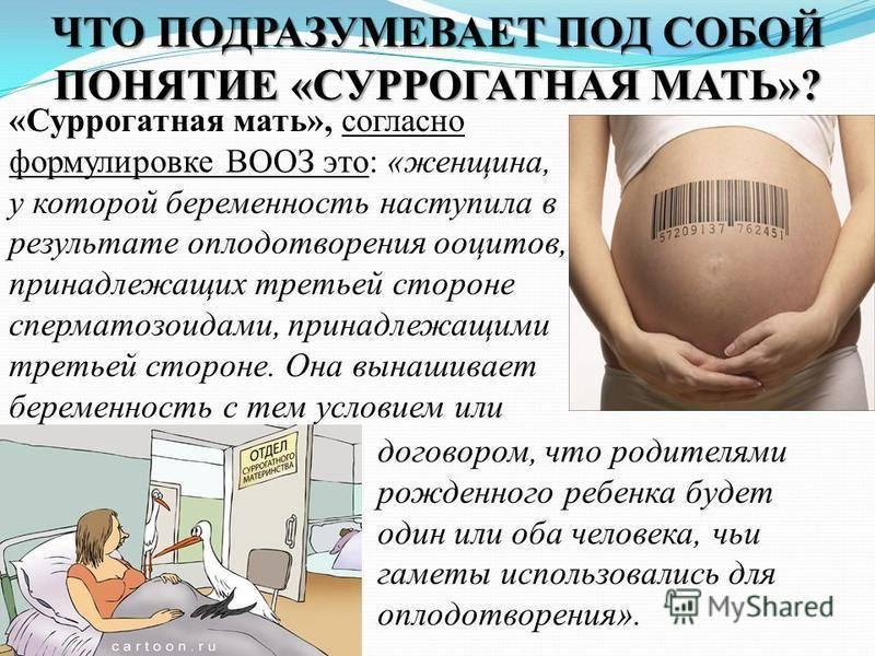 Разрешено ли суррогатное материнство в россии? перечень прав и обязанностей суррогатной матери